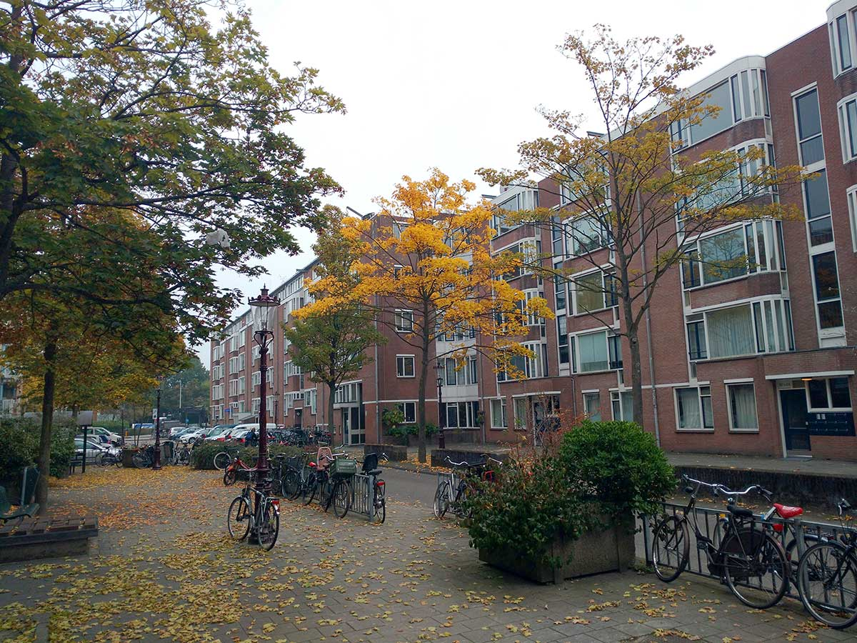 Herfst in Commelinstraat