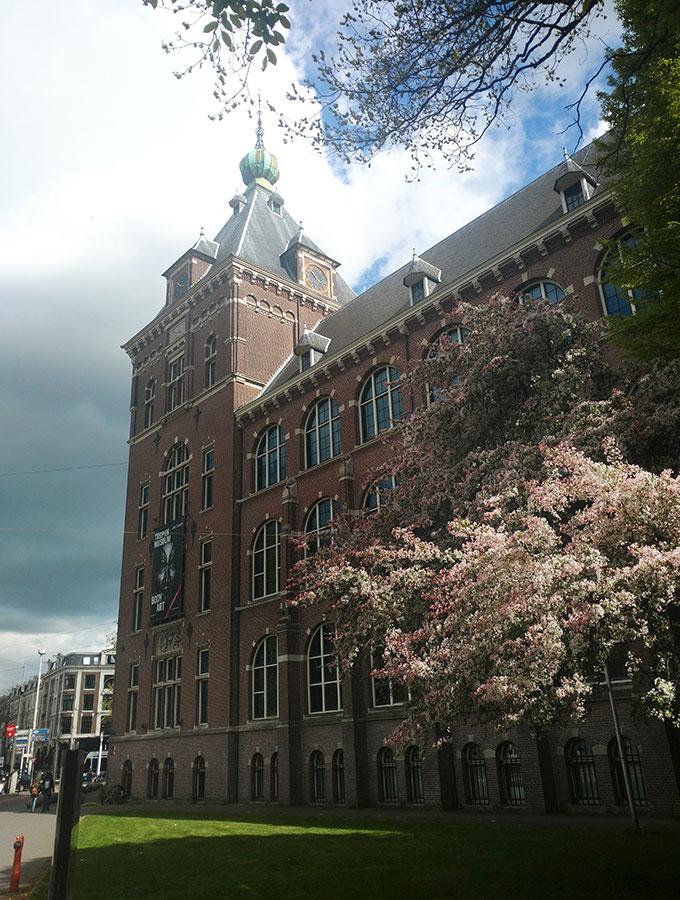 Mauritskade-zijde met zicht op toren en ingang Commelinstraat in de verte. Roze-witte bloesem op de voorgrond.