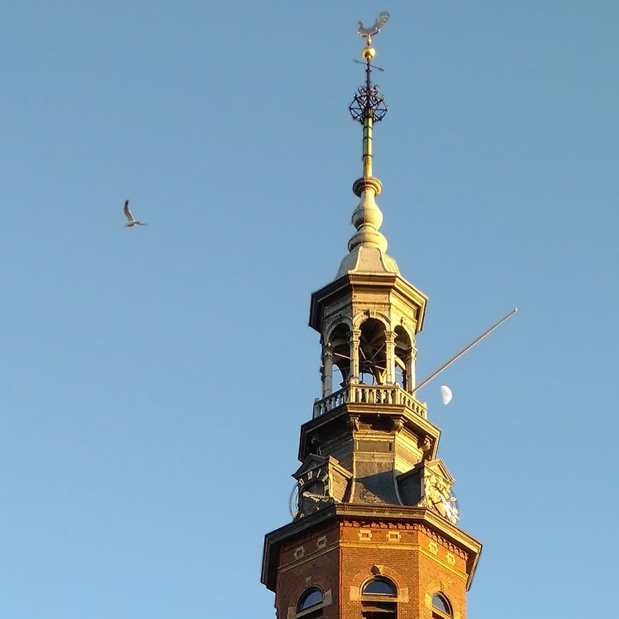 Close-up van torenspits Muiderkerk met rechts een halve maan en links een meeuw