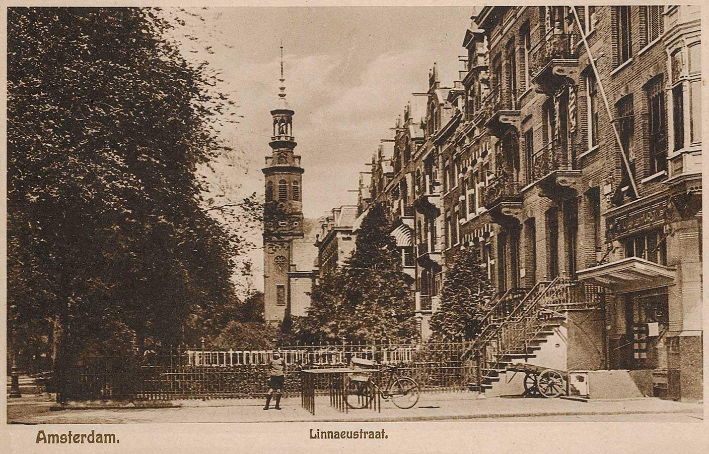 Muiderkerk gezien vanaf de Wijttenbackstraat over de Linnaeus voortuintjes heen