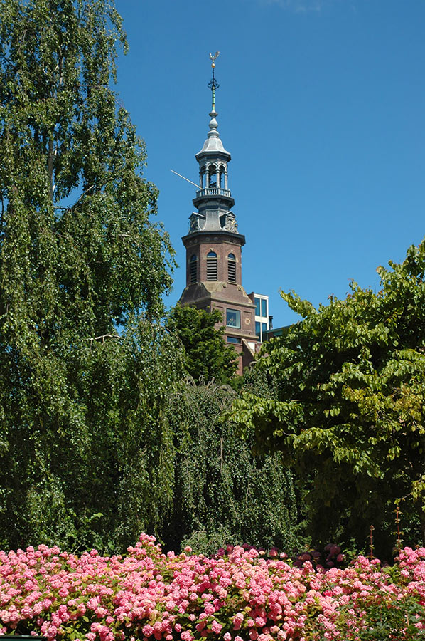Toren van Muiderkerk bezien vanuit Oosterpark