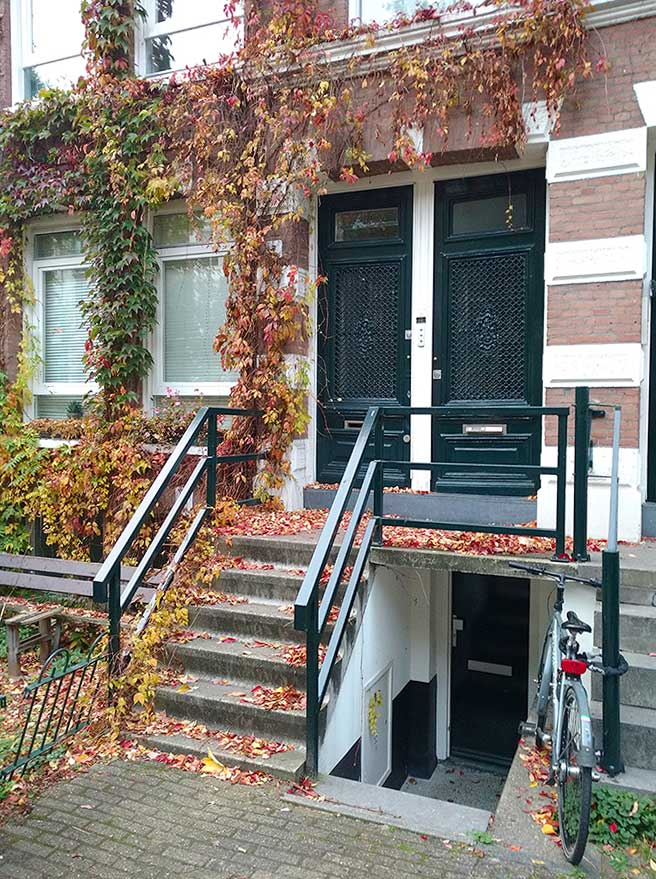 2 voordeuren met veel gekleurde herfstbladeren op de trap en in de klimop