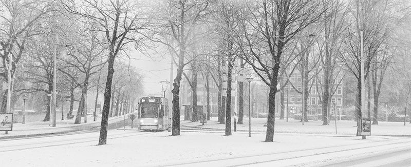 Besneeuwde rotonde Linnaeusstraat-Mauritskade